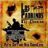 Los Padrinos del Corrido by Various Artists
