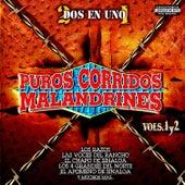 Puros Corridos Malandrinos Vol. 1 y 2 by Various Artists