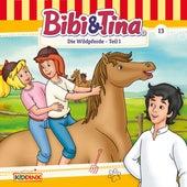 Folge 13: Die Wildpferde - Teil 1 von Bibi & Tina