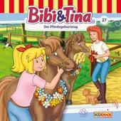 Folge 27: Der Pferdegeburtstag von Bibi & Tina