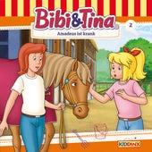 Folge 2: Amadeus ist krank von Bibi & Tina