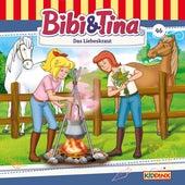 Folge 46: Das Liebeskraut von Bibi & Tina
