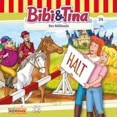 Folge 24: Der Millionär von Bibi & Tina