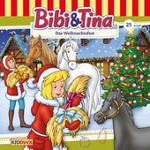 Folge 25: Das Weihnachtsfest von Bibi & Tina