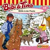 Folge 60: Wölfe in der Puszta von Bibi & Tina
