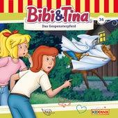 Folge 34: Das Gespensterpferd von Bibi & Tina