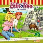 Folge 45: Der Pferdedieb von Bibi & Tina