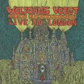 Rückverzauberung Live in London de Wolfgang Voigt