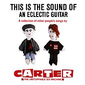 This Is the Sound of an Eclectic Guitar: A Collection of Other People's Songs de Carter the Unstoppable Sex Machine