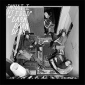 What I Needed EP by Dark Dark Dark