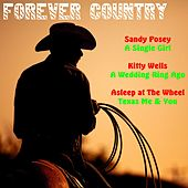 Forever Country von Various Artists
