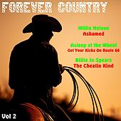 Forever Country, Vol. 2 by Various Artists