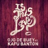 Is This Love (feat. Kafu Banton) de Ojo de Buey