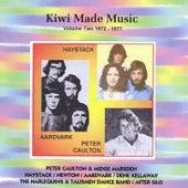Kiwi Made Music Vol.2 de Various Artists
