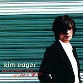 Butterflies and Broken Glass by Kim Edgar