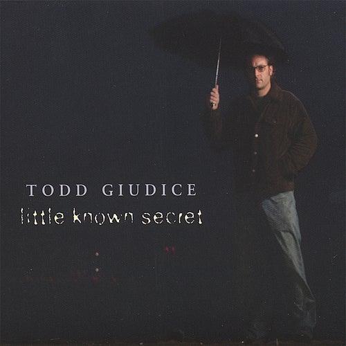Little Known Secret by Todd Giudice
