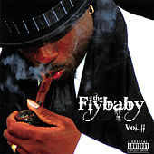 Bout Time.... Vol. 2 von The Flybaby