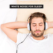 White Noise for Sleep by Various Artists