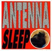 Sleep by Antenna