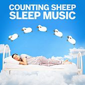 Counting Sheep Sleep Music de Various Artists