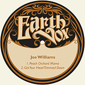 Peach Orchard Mama / Get Your Head Trimmed Down von Joe Williams