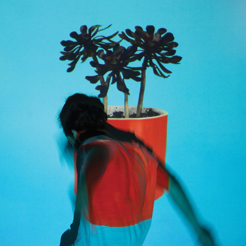 Sunlit Youth by Local Natives
