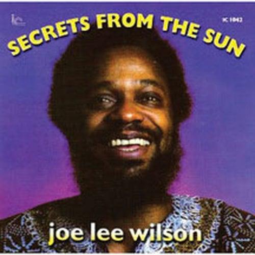 Secrets From The Sun by Joe Lee Wilson