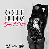 Sweet Wine - Single de Collie Buddz
