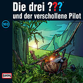 163/und der verschollene Pilot von Die drei ???