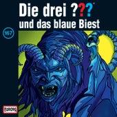 167/und das blaue Biest von Die drei ???