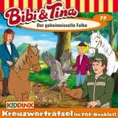 Folge 72: Der geheimnisvolle Falke von Bibi & Tina