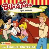 Folge 74: Spuk im Wald von Bibi & Tina