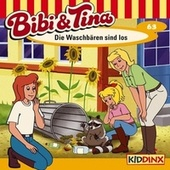 Folge 63: Die Waschbären sind los von Bibi & Tina