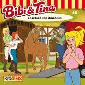Folge 65: Abschied von Amadeus von Bibi & Tina