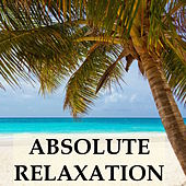 Absolute Relaxation Collection - 20 Soothing Instrumental Melodies for Deep Sleep, Yoga & Meditation, Stress Relief, Study Focus and Better Sleeping Habits von Relajacion Del Mar