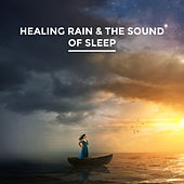 Healing Rain & The Sound of Sleep by Various Artists