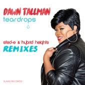 Teardrops (Sted-E & Hybrid Heights Remixes) by Dawn Tallman