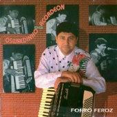 Forró Feroz by Oswaldinho Do Acordeon