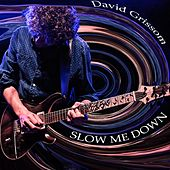 Slow Me Down by David Grissom
