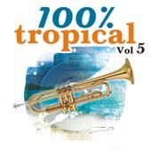 100% Tropical, Vol. 5 de Various Artists