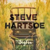 The Big Fix de Steve Hartsoe