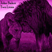 Two Lions de John Baker