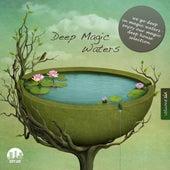 Deep Magic Waters, Vol. 6 by Various Artists