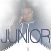 Onderweg de Junior