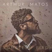 Homeless Bird de Arthur Matos