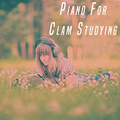 Piano For Clam Studying de Various Artists