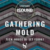 Gathering Mold von Various