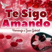 Te Sigo Amando - Homenaje a Juan Gabriel by Various Artists