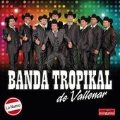 Lo Nuevo by La Banda Tropikal de Vallenar