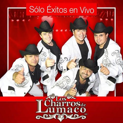 Sólo Exitos en Vivo (En Vivo) de Los Charros De Lumaco